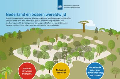 Infographic Nederland en bossen wereldwijd Ministerie LNV
